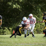 saukville rebels and mequon cardinals